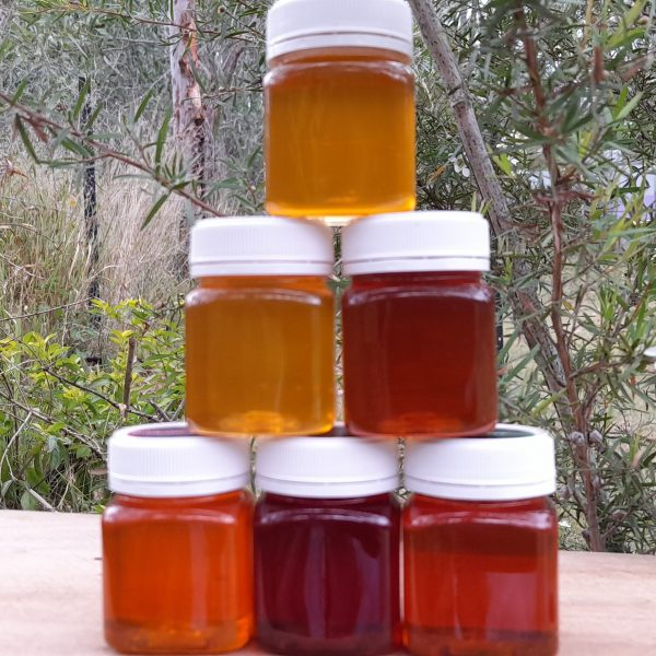 honey pyramid showing colour of honey variants